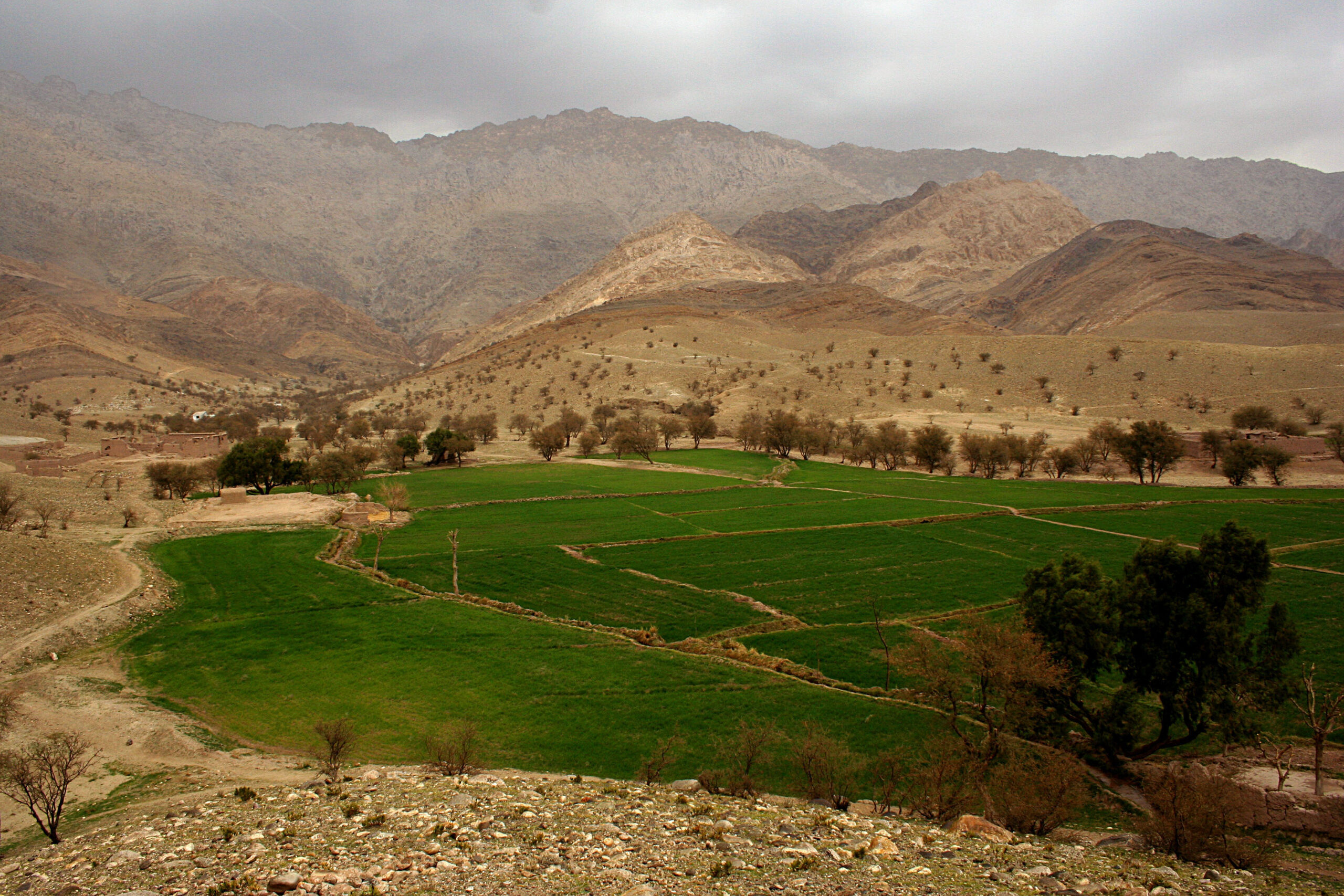 Evaluation lessons from development assistance to Afghanistan [WP1223]