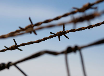 Strategies for tackling torture and improving prevention (WP1382)
