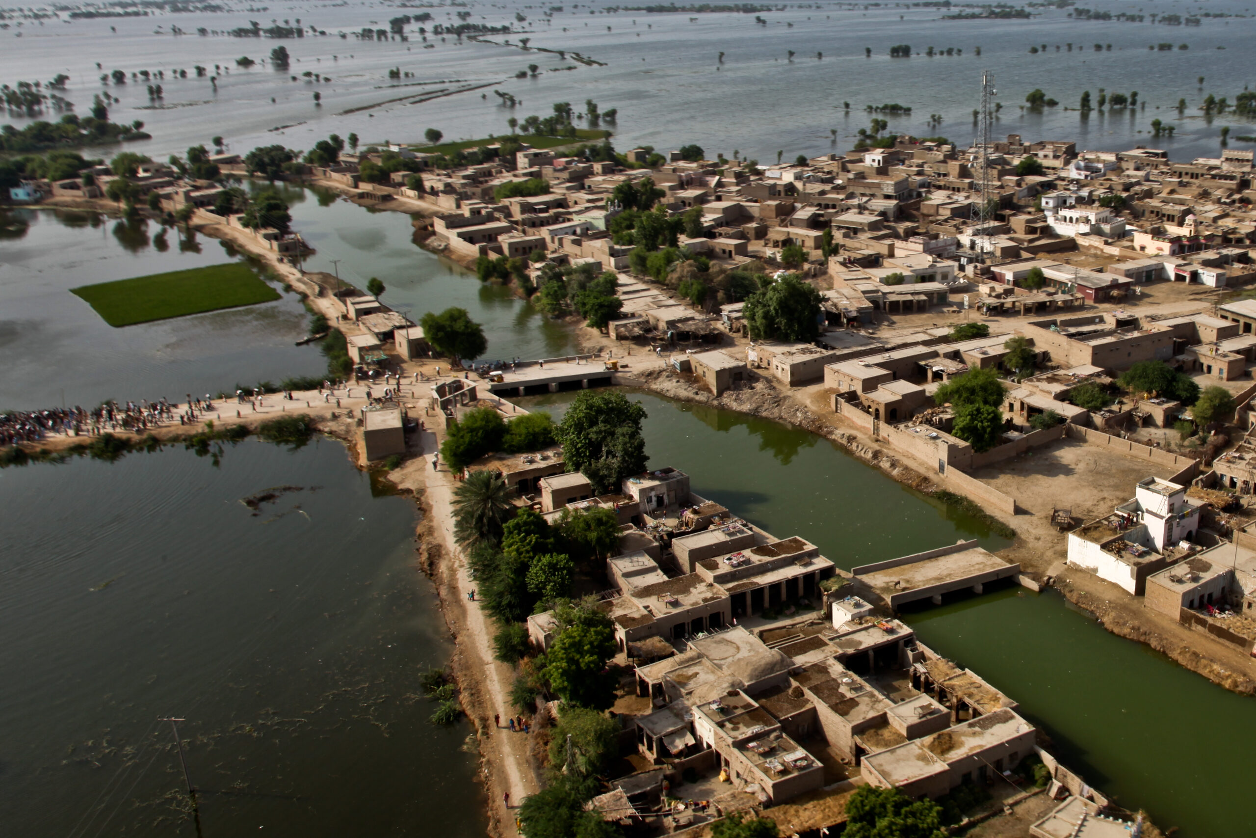 Challenges in flood risk management in urban areas of river deltas in South and South East Asia (WP1257)