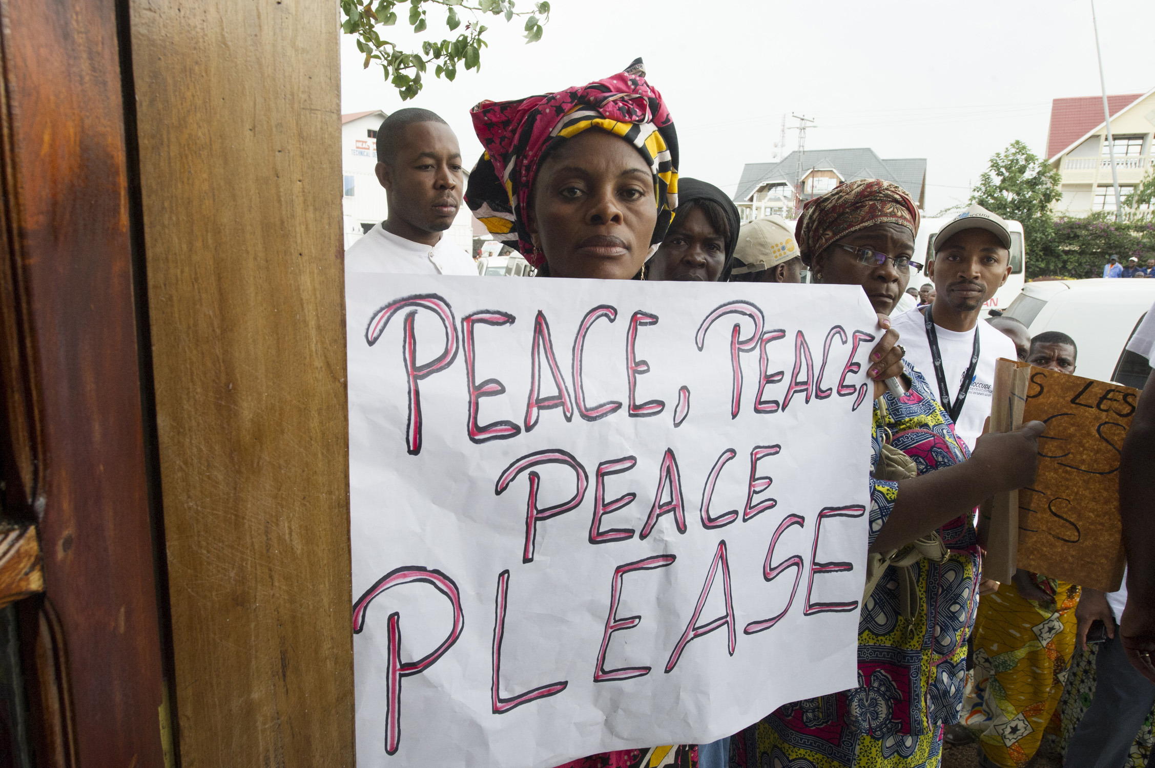 Promoting effective international peace operations in increasingly complex environments (WP1336)