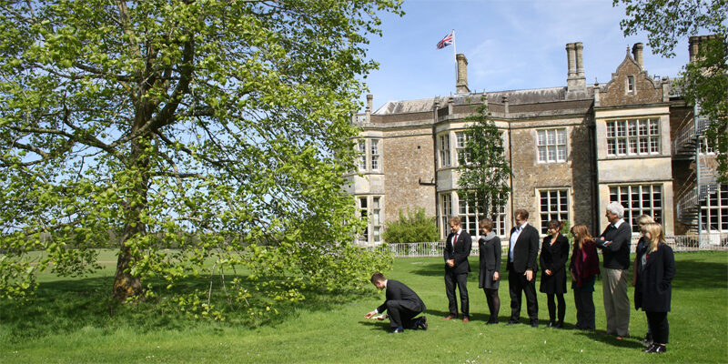 People displaying a Cree offering in front of a Liriodendron tulipifera tulip tree at Wilton Park