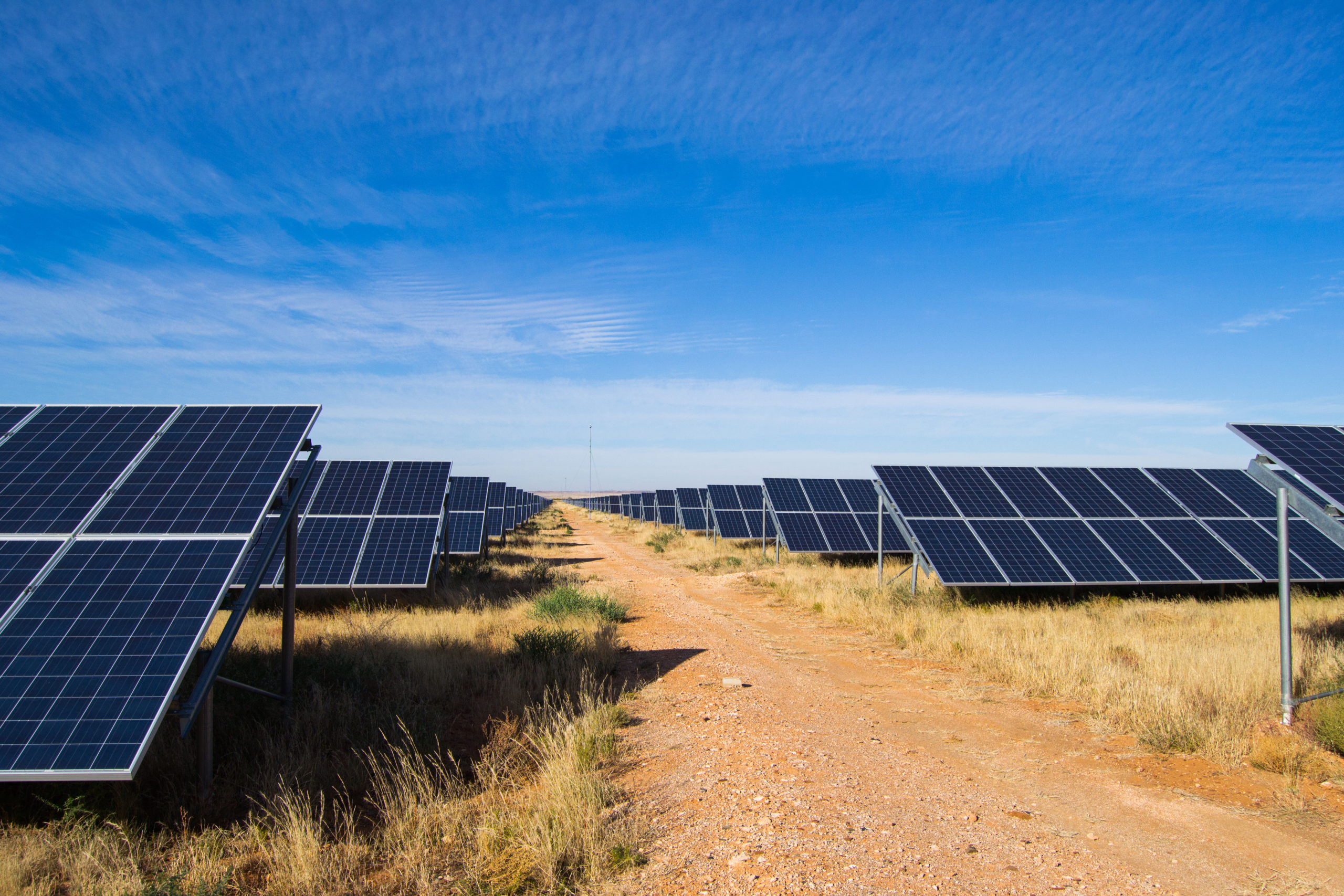 Energy Futures: Green Grids, Electric Cooking and the Global Energy Transition (WP1746)