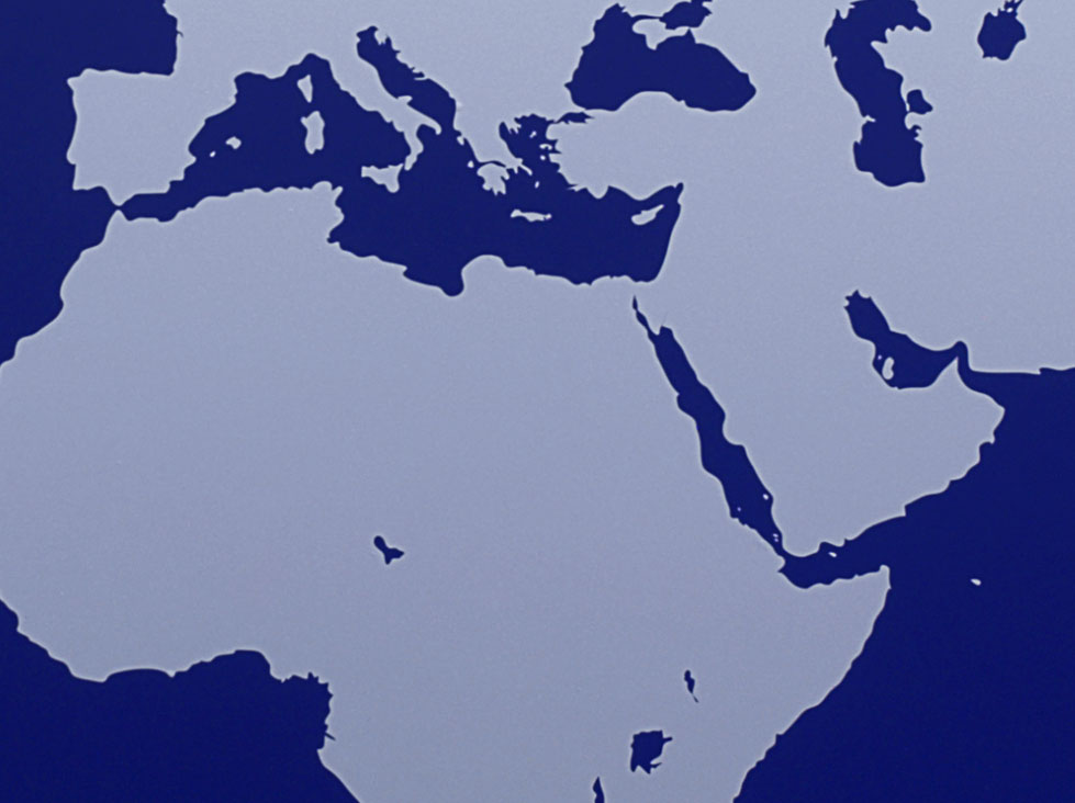 Implementing the Convention against Torture (CAT): sharing best practice and experience in preventing torture in police custody in the Middle East and North Africa (WP1426)