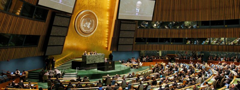 A view of the United Nations General Assembly during the 2015 Review Conference of the Parties to the Treaty on the Non-Proliferation of Nuclear Weapons (NPT)