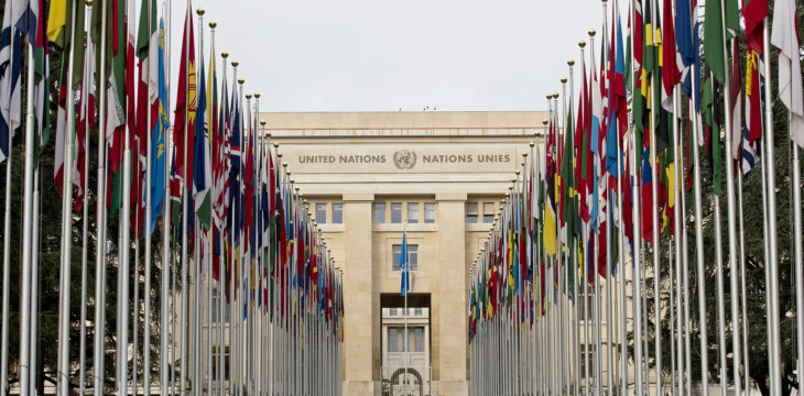 Strengthening the UN human rights treaty monitoring system: what are the next steps? (WP1375)