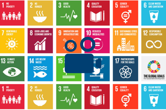 How will we know the SDGs have succeeded in 2030?