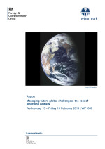Managing future global challenges: the role of emerging powers (WP1660)
