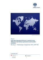 Internally Displaced Persons: towards more effective international protection and durable solutions (WP1705)