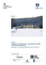 Nuclear non-proliferation: preparing for the 2020 NPT Review Conference (WP1718)