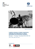 Landmine clearance in Angola: experiences, challenges and implications for national development and international reputation (WP1724)