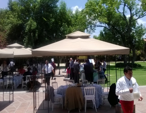 Participants enjoying the environment during a break at the conference