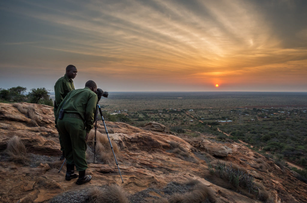 Wildlife crime and international security: strengthening law enforcement (WP1423)