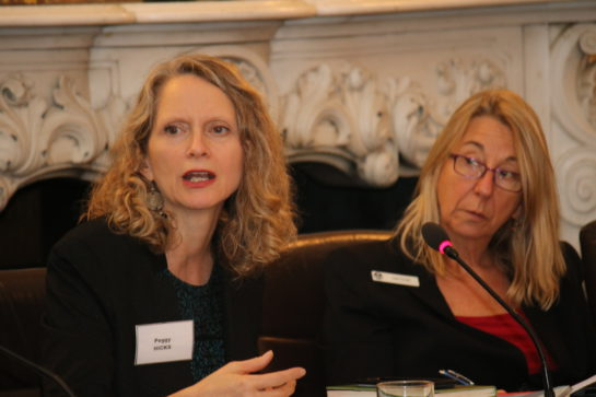 Peggy Hicks, Director, Thematic Engagement, Special Procedures and Right to Development Division and Julia Purcell, Programme Director, Wilton Park
